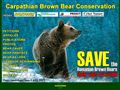 Brown Bear Conservation
